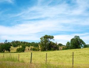 Tuolumne County, California
